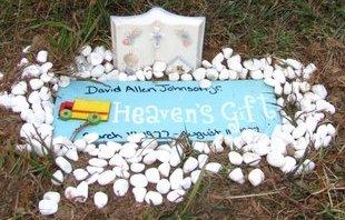 JOHNSON JR., DAVID ALLEN - Hamilton County, Ohio | DAVID ALLEN JOHNSON JR. - Ohio Gravestone Photos