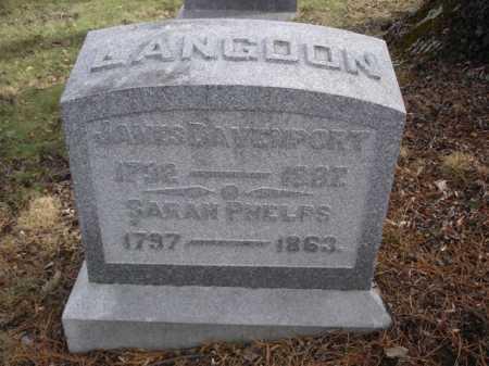 LANGDON, SARAH - Hamilton County, Ohio | SARAH LANGDON - Ohio Gravestone Photos