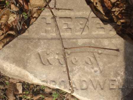 BROADWELL, ? HEBE?? - Hamilton County, Ohio | ? HEBE?? BROADWELL - Ohio Gravestone Photos
