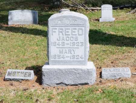 INSLEY FREED, MARY - Hancock County, Ohio | MARY INSLEY FREED - Ohio Gravestone Photos