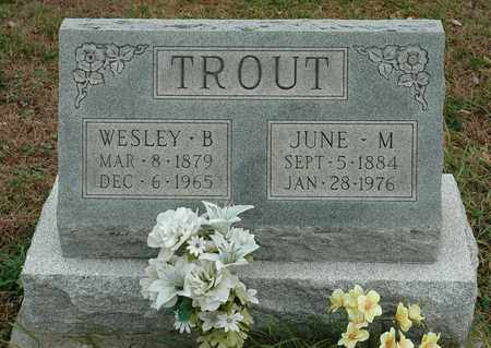 TROUT, WESLEY B. - Hancock County, Ohio | WESLEY B. TROUT - Ohio Gravestone Photos