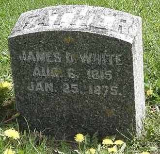 WHITE, JAMES D. - Hardin County, Ohio | JAMES D. WHITE - Ohio Gravestone Photos