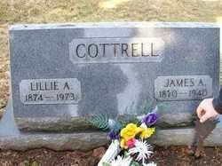 COTTRELL, LILLIE A. - Hardin County, Ohio | LILLIE A. COTTRELL - Ohio Gravestone Photos
