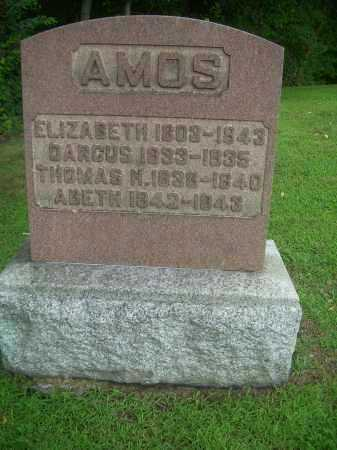 AMOS, ELIZABETH - Harrison County, Ohio | ELIZABETH AMOS - Ohio Gravestone Photos