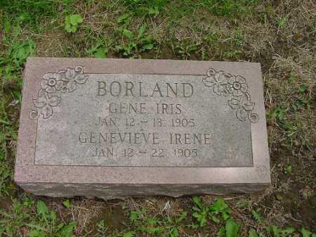 BORLAND, GENE IRIS - Harrison County, Ohio | GENE IRIS BORLAND - Ohio Gravestone Photos