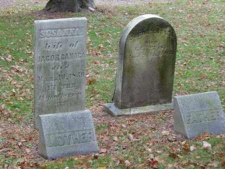 CANAGA, SUSANNA - Harrison County, Ohio | SUSANNA CANAGA - Ohio Gravestone Photos