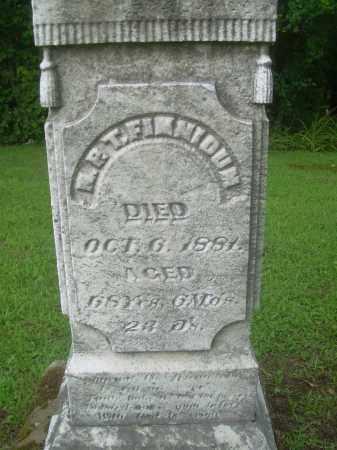 FINNICUM, N.P.T. - Harrison County, Ohio | N.P.T. FINNICUM - Ohio Gravestone Photos