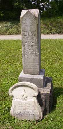 GOTSCHALL, NANCY LUCINDA - Harrison County, Ohio | NANCY LUCINDA GOTSCHALL - Ohio Gravestone Photos