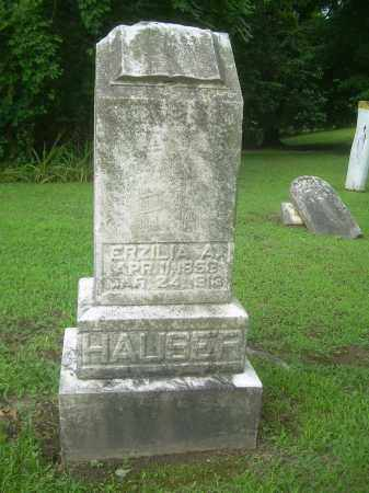 HAUSER, ERZILIA A. - Harrison County, Ohio | ERZILIA A. HAUSER - Ohio Gravestone Photos