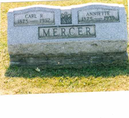 MURDOCK MERCER, ANNIETTE - Harrison County, Ohio | ANNIETTE MURDOCK MERCER - Ohio Gravestone Photos