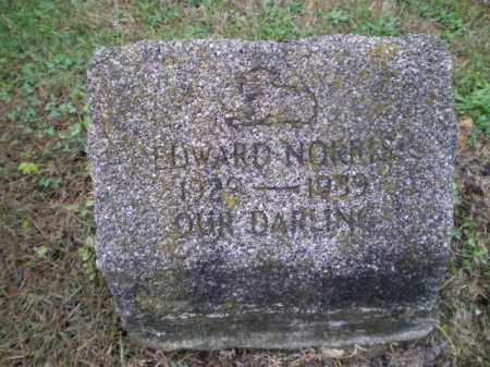 NORRIS, EDWARD - Harrison County, Ohio   EDWARD NORRIS - Ohio Gravestone Photos