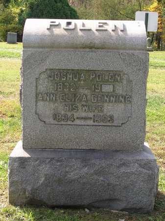 POLEN, ANN ELIZA - Harrison County, Ohio | ANN ELIZA POLEN - Ohio Gravestone Photos