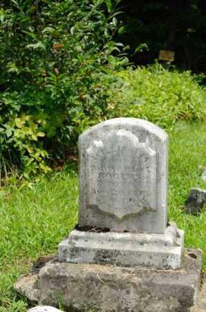 ROGERS, WILLIAM M. - Harrison County, Ohio | WILLIAM M. ROGERS - Ohio Gravestone Photos