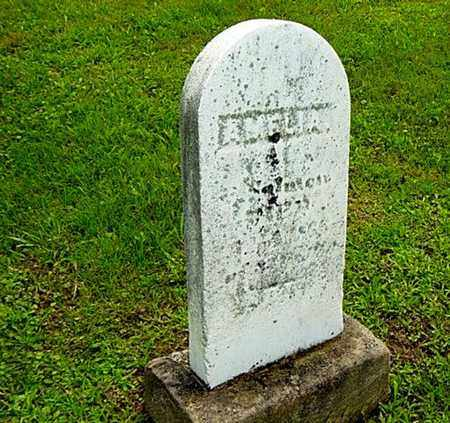 PHILLIPS SALMON, AMELIA - Harrison County, Ohio   AMELIA PHILLIPS SALMON - Ohio Gravestone Photos