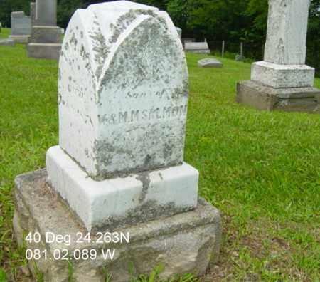 SALMON, JOHN HENRY - Harrison County, Ohio | JOHN HENRY SALMON - Ohio Gravestone Photos