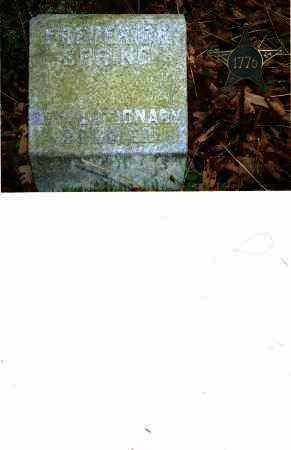 SPRING, FREDERICK - Harrison County, Ohio | FREDERICK SPRING - Ohio Gravestone Photos