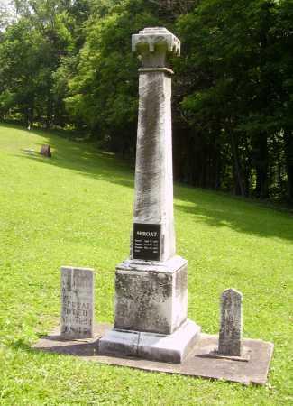 SPROAT, SAMUEL - OVERALL - Harrison County, Ohio | SAMUEL - OVERALL SPROAT - Ohio Gravestone Photos