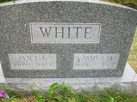WHITE, ALICE L - Harrison County, Ohio | ALICE L WHITE - Ohio Gravestone Photos