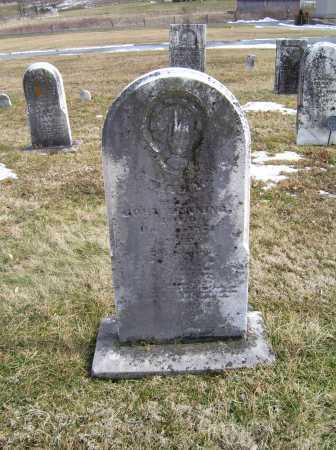 DENNING, MARY - Highland County, Ohio | MARY DENNING - Ohio Gravestone Photos
