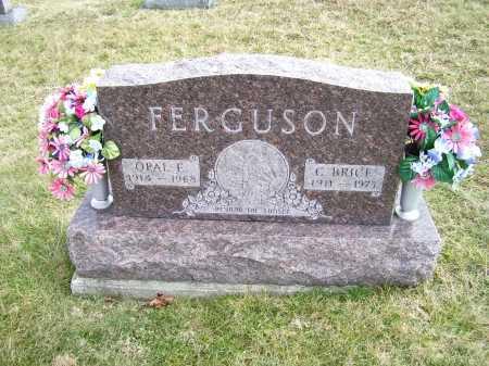 FERGUSON, C. BRICE - Highland County, Ohio | C. BRICE FERGUSON - Ohio Gravestone Photos