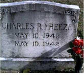 FREEZE, CHARLES R. - Highland County, Ohio   CHARLES R. FREEZE - Ohio Gravestone Photos