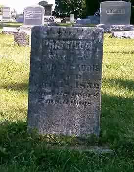 GADDIS, PRISCILLA - Highland County, Ohio | PRISCILLA GADDIS - Ohio Gravestone Photos