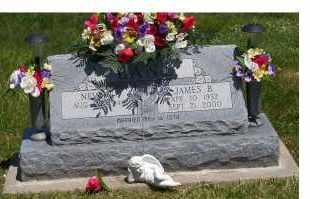 LANE, JAMES B. - Highland County, Ohio | JAMES B. LANE - Ohio Gravestone Photos