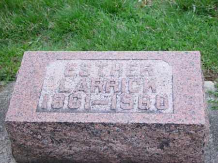 LARRICK, ESTHER ANN - Highland County, Ohio | ESTHER ANN LARRICK - Ohio Gravestone Photos
