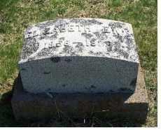 LEWIS, ELIZABETH - Highland County, Ohio   ELIZABETH LEWIS - Ohio Gravestone Photos