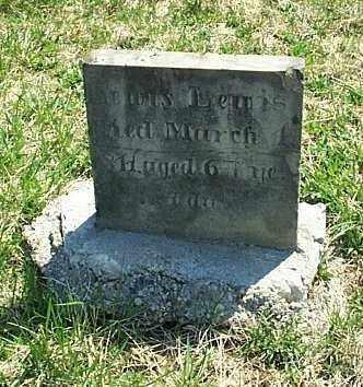 LEWIS, LEWIS - Highland County, Ohio | LEWIS LEWIS - Ohio Gravestone Photos