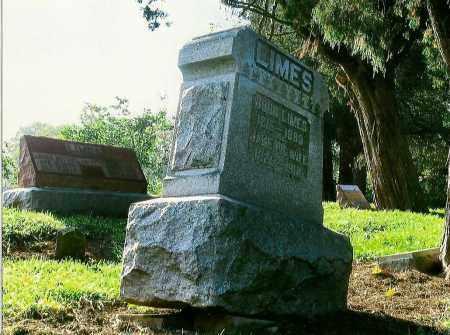 LIMES, JANE - Highland County, Ohio | JANE LIMES - Ohio Gravestone Photos