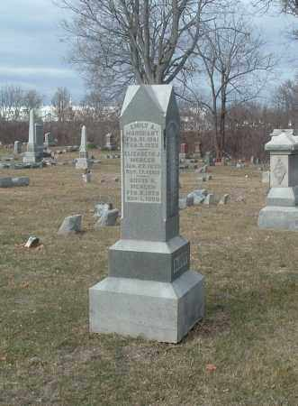 MERCER, AUSTA - Highland County, Ohio | AUSTA MERCER - Ohio Gravestone Photos