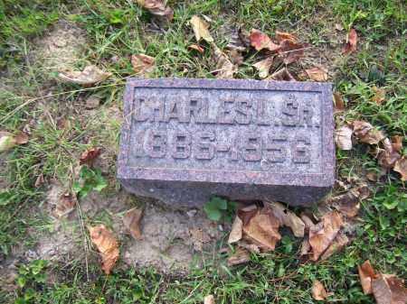 NYE, CHARLES L. SR. - Highland County, Ohio | CHARLES L. SR. NYE - Ohio Gravestone Photos