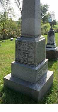 PATTON, BETSY ANN - Highland County, Ohio | BETSY ANN PATTON - Ohio Gravestone Photos