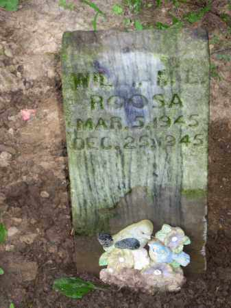 ROOSA, WILLIAM - Highland County, Ohio | WILLIAM ROOSA - Ohio Gravestone Photos