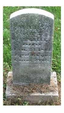SMALLEY, MARY - Highland County, Ohio | MARY SMALLEY - Ohio Gravestone Photos