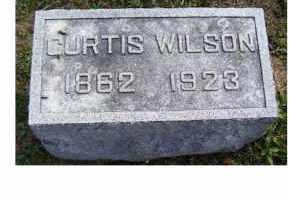 WILSON, CURTIS - Highland County, Ohio | CURTIS WILSON - Ohio Gravestone Photos