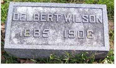 WILSON, DELBERT - Highland County, Ohio   DELBERT WILSON - Ohio Gravestone Photos