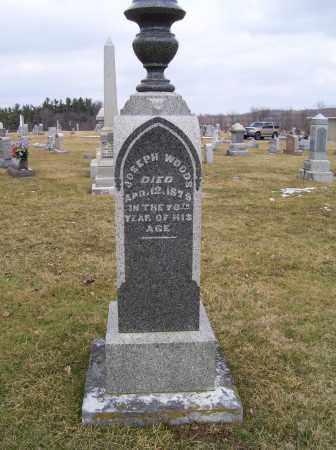 WOODS, JOSEPH - Highland County, Ohio | JOSEPH WOODS - Ohio Gravestone Photos
