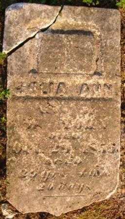 YOHN, JULIA ANN - Highland County, Ohio | JULIA ANN YOHN - Ohio Gravestone Photos