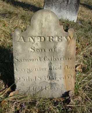 CARPENTER, ANDREW - Hocking County, Ohio | ANDREW CARPENTER - Ohio Gravestone Photos