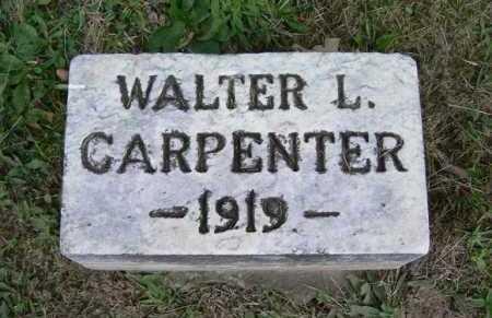 CARPENTER, WALTER L. - Hocking County, Ohio   WALTER L. CARPENTER - Ohio Gravestone Photos