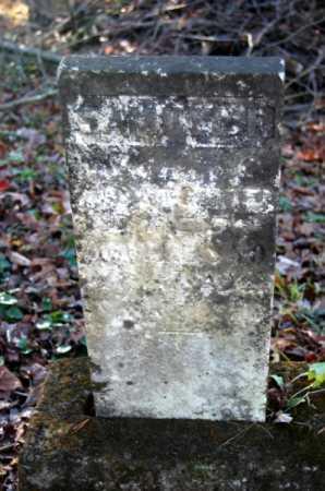 CARTER, SAMUEL F - Hocking County, Ohio   SAMUEL F CARTER - Ohio Gravestone Photos