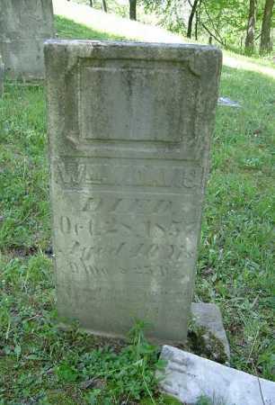 DAVIS, WILLIAM W. - Hocking County, Ohio   WILLIAM W. DAVIS - Ohio Gravestone Photos