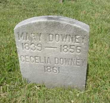 DOWNEY, MARY - Hocking County, Ohio | MARY DOWNEY - Ohio Gravestone Photos