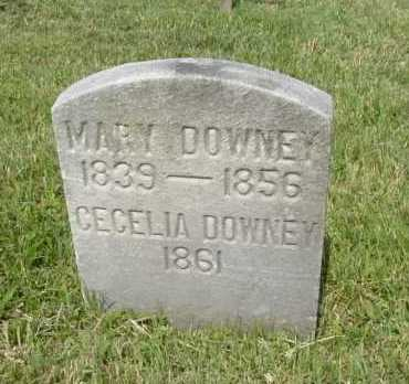 DOWNEY, CECELIA - Hocking County, Ohio | CECELIA DOWNEY - Ohio Gravestone Photos