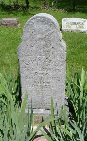 JACKSON, LYDIA BELL - Hocking County, Ohio   LYDIA BELL JACKSON - Ohio Gravestone Photos