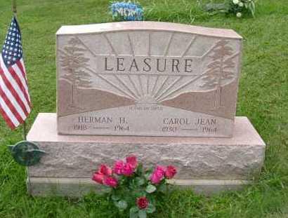 LEASURE, CAROL JEAN - Hocking County, Ohio   CAROL JEAN LEASURE - Ohio Gravestone Photos