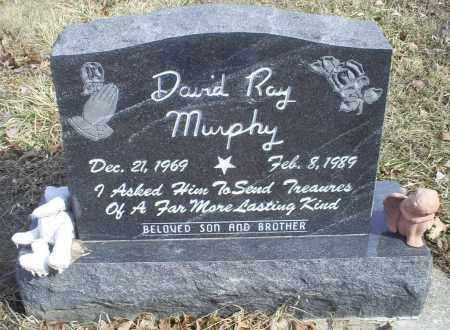 MURPHY, DAVID RAY - Hocking County, Ohio | DAVID RAY MURPHY - Ohio Gravestone Photos