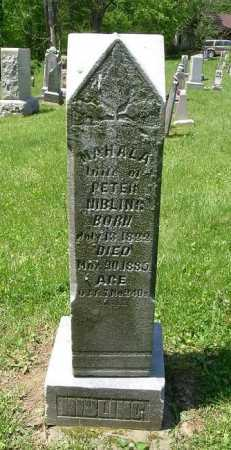 NIBLING, MAHALA - Hocking County, Ohio | MAHALA NIBLING - Ohio Gravestone Photos